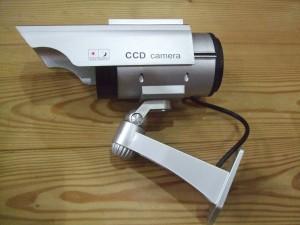 DSCF8214